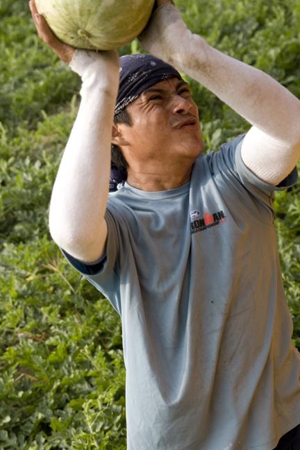 MFW2011 Sandias 01